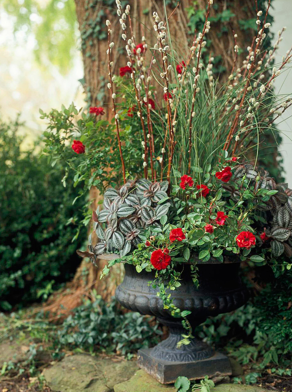 Formal summer container garden