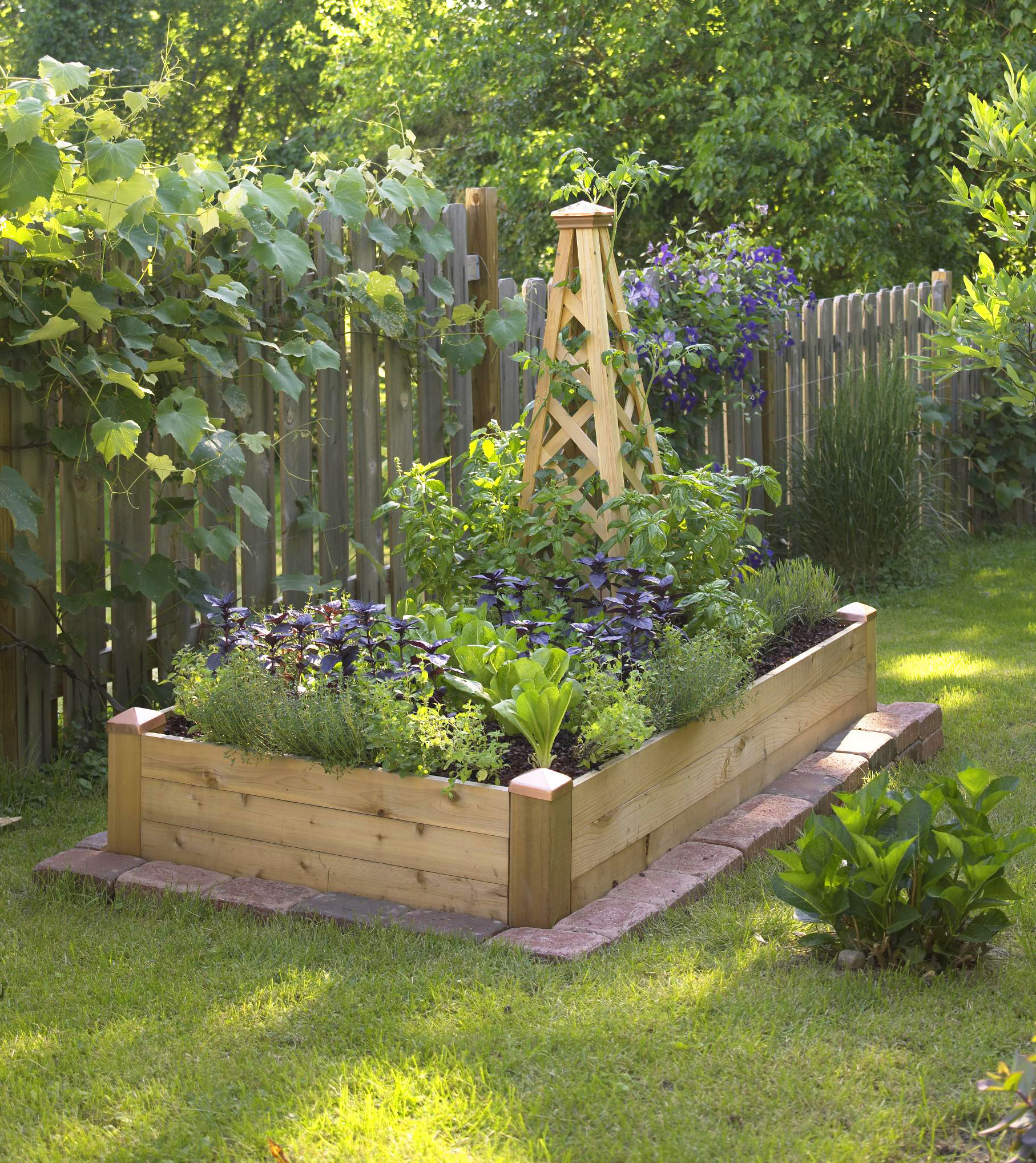 a wood obelisk provides space for climbing plants in a 3x6 foot raised bed - Garden Bed