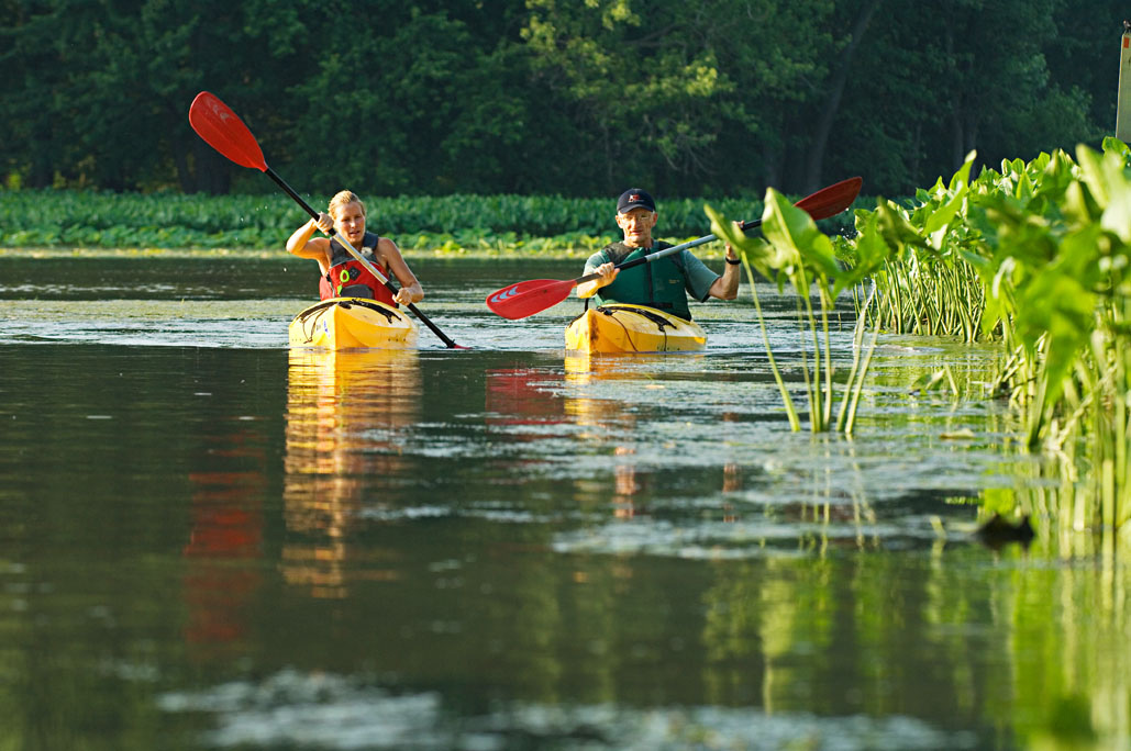 Paddling on the Galena River