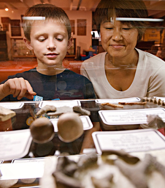 Fick Fossil and History Museum, Oakley