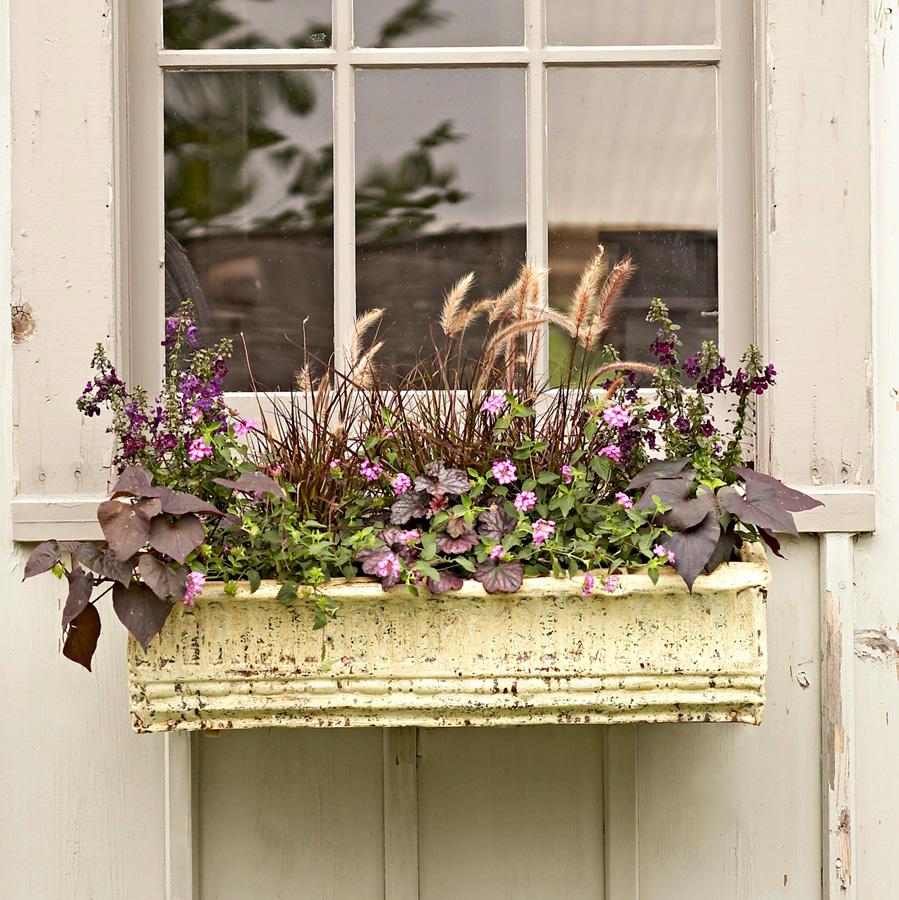 Victorian ceiling-tin box