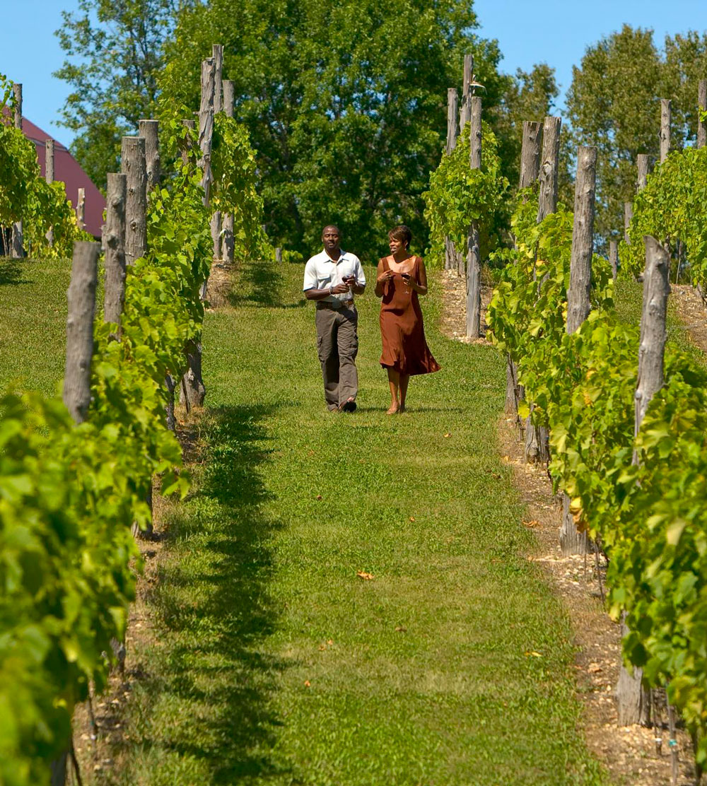 Things to Do in Door County--Wineries