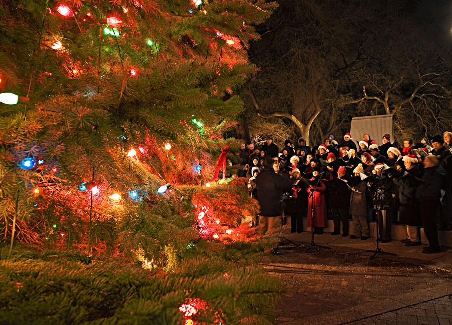 Miller Valley Christmas Lights