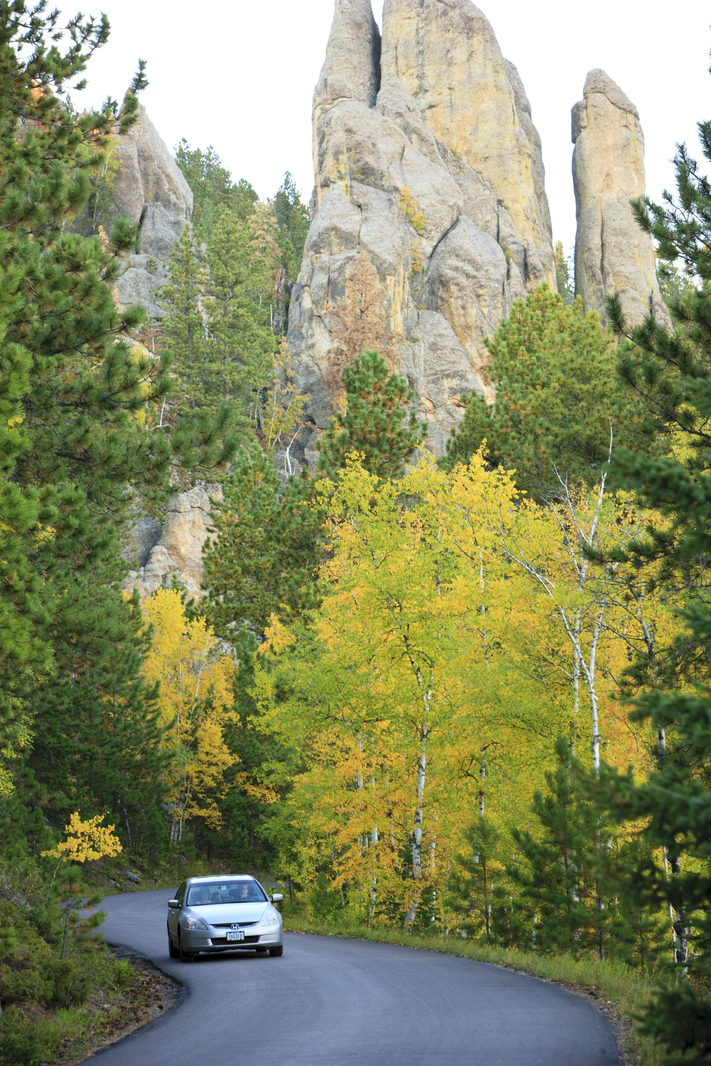 Needles Highway, Custer State Park.
