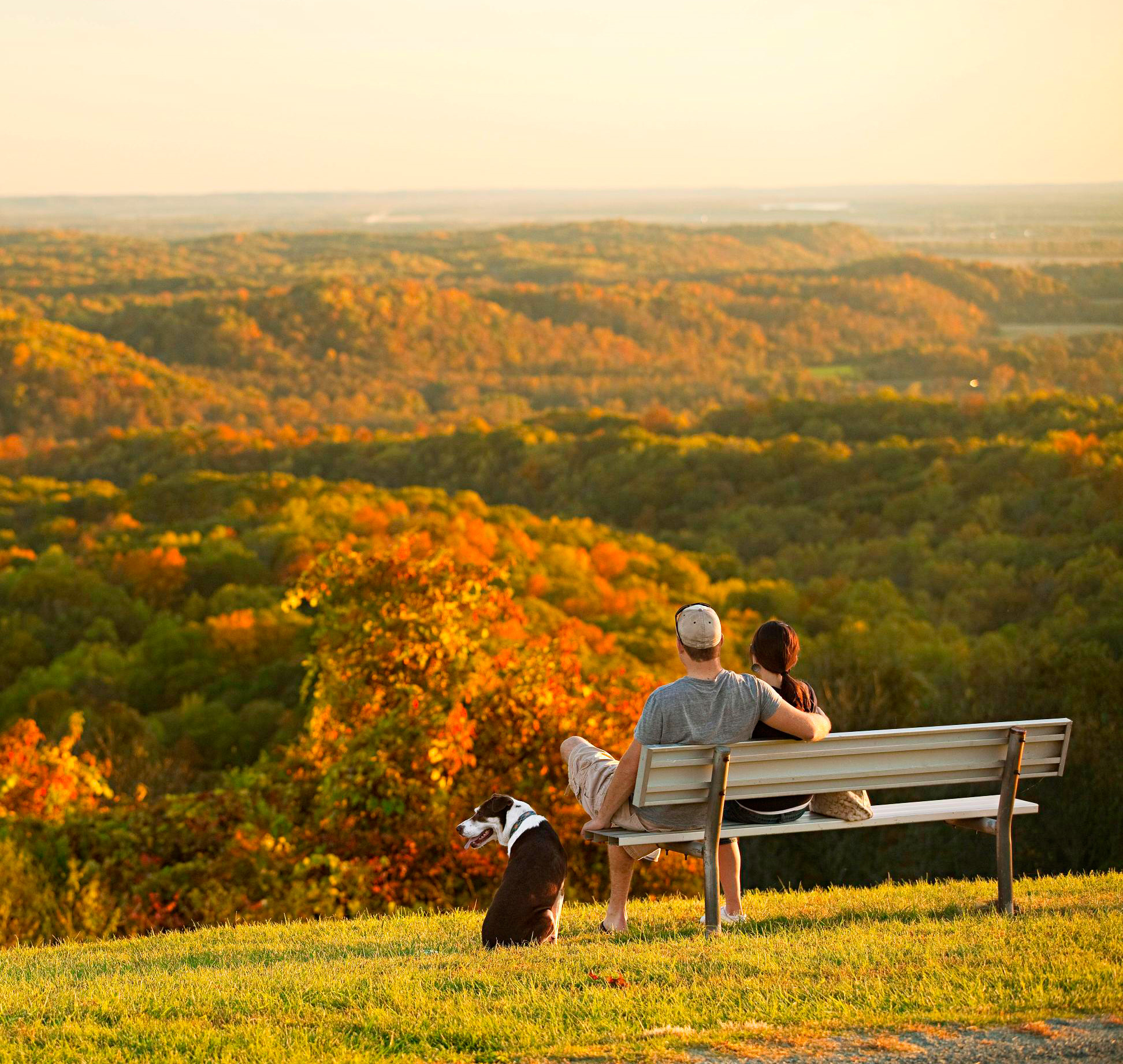 Fall color in southern Illinois.