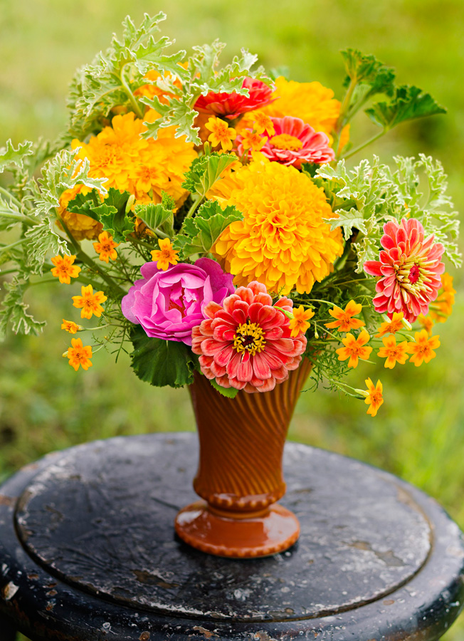 Collect Marigold Heads Of As Many Sizes And Varieties You Like Then Sew Them Together With A Needle Thread To Create Gorgeous Fl Garland