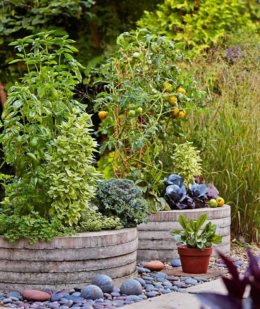 Quiet Corner Container Gardening Ideas: Garden Tour: Shape Shifter