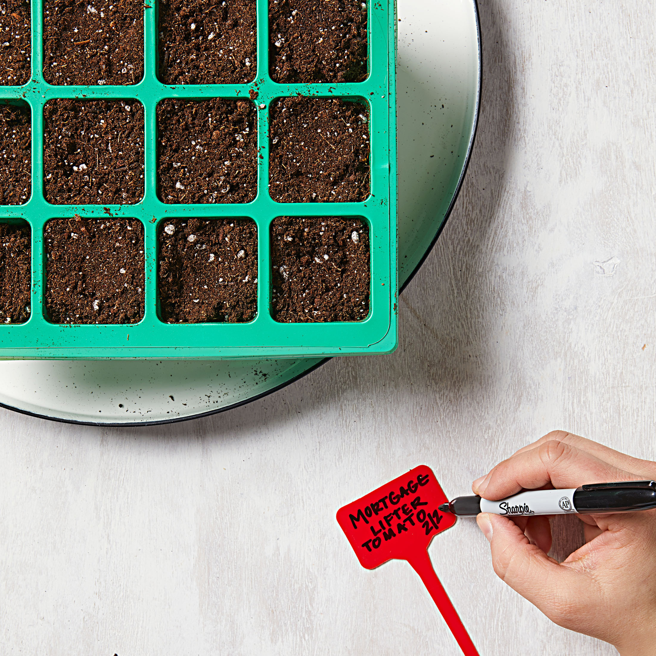 How to start seeds—Step 5