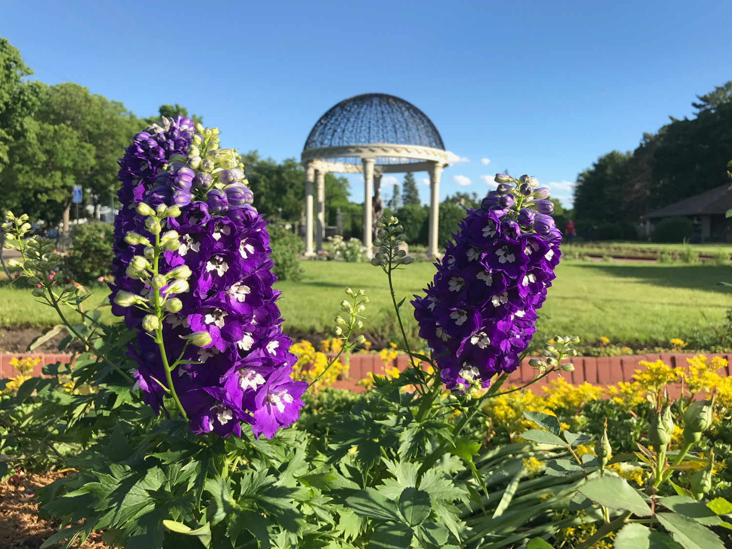 Quarry Shade Garden At Bon Air Park: 8 Great Things To Do In St. Cloud, Minnesota