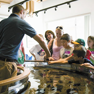 Things to do in Dubuque, Iowa—National Mississippi River Museum and Aquarium