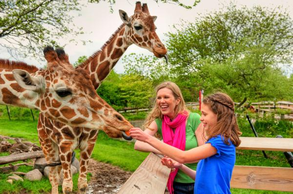 Top Things To Do With Kids In Indianapolis Midwest Living - 10 things to see and do in indianapolis
