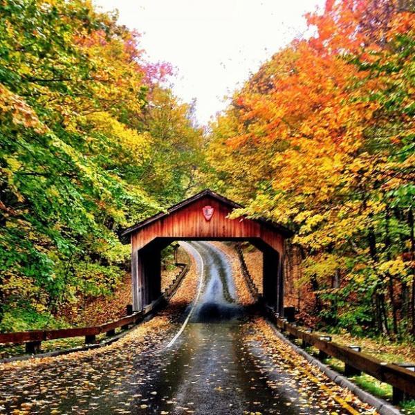 beautiful fall scenic view - photo #11