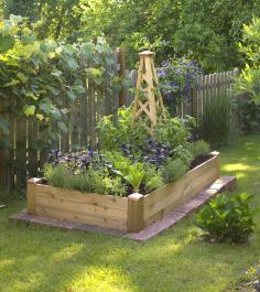 A wood obelisk provides space for climbing plants in a 3x6-foot raised bed.