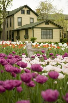 Tulip Time festival celebrates the city's Dutch heritage with beautiful blooms.