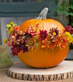slideshow - Fall Decorating