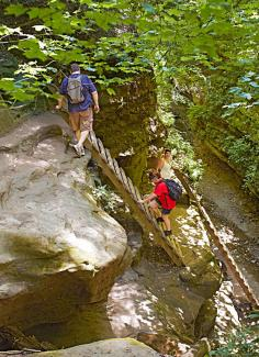 At Turkey Run State Park in western Indiana, you'll climb ladders to hike Trail 3.