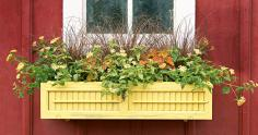 Window box planter