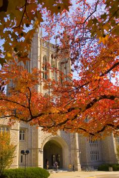 University of Missouri. Columbia, Missouri.