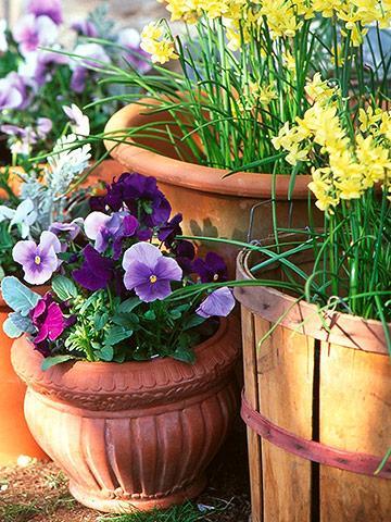 March Garden Calendar