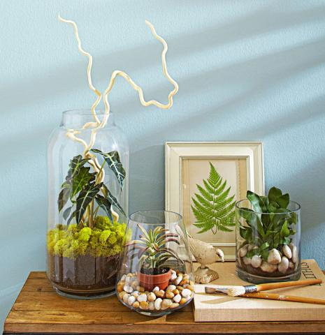 4 ideas for stylish indoor plant displays midwest living - Indoor plant decor ideas ...