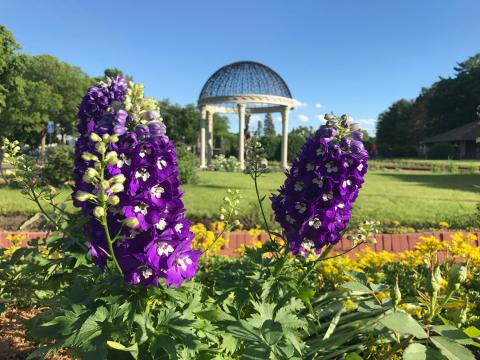8 Great Things to Do in St. Cloud, Minnesota | Midwest Living