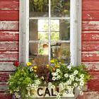 Street-Sign Window Box