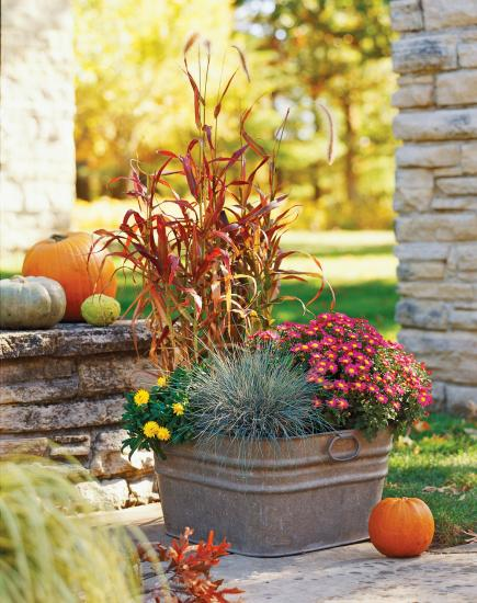 Fresh fall container gardens midwest living - Potted autumn flowers ...