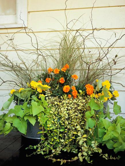 Container gardens for the midwest midwest living informal summer planting mightylinksfo