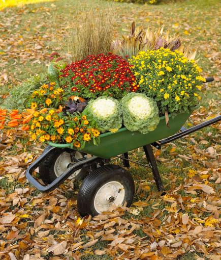 Bountiful Wheelbarrow Put Together A Colorful Outdoor Fall