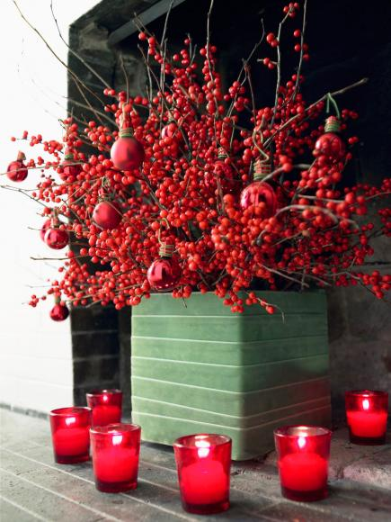 Nature inspired christmas decorations midwest living for Amarilis decoration