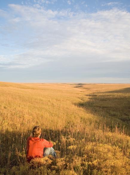 Flint Hills prairie