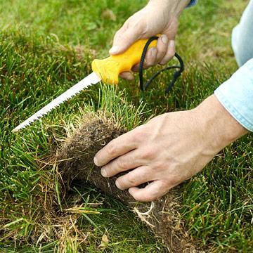 October garden calendar midwest living - Gardening works in october winter preparations ...