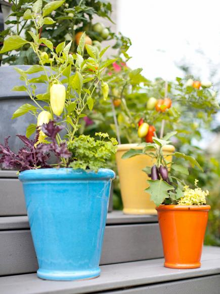 Enjoy a Ve able Container Garden