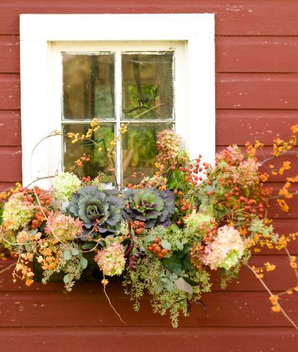 Fall Window Box: 30 Bright And Beautiful Window Box Planters