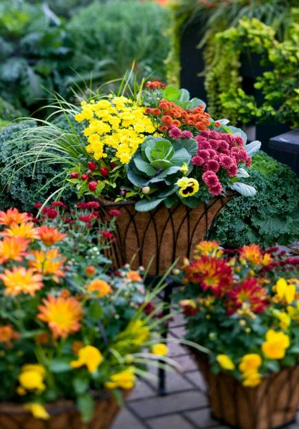 outdoor fall decorating with mums midwest living rh midwestliving com