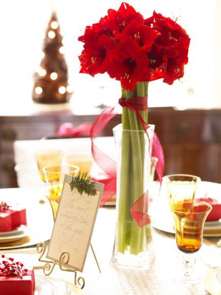 christmas centerpiece ideas amaryllis - Christmas Table Decoration Ideas Easy