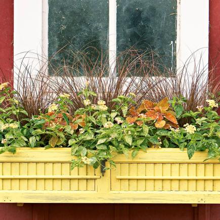 Old window shutter box & 30 Bright and Beautiful Window Box Planters | Midwest Living