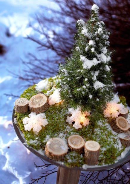 Spruce Up A Pot