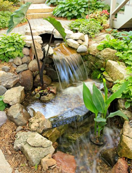 Backyard Oasis Ideas Pictures small backyard oasis ideas your ideal backyard oasis with a new patio How To Make Your Backyard A Vacation Oasis
