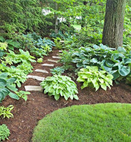 Landscape Designers Columbia Sc Landscaping Bushes Midwest