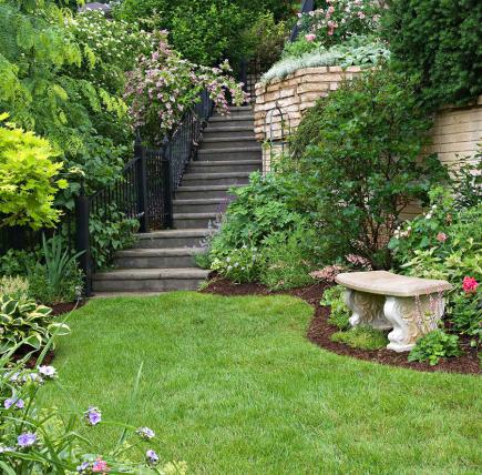 Garden tour tame a steep backyard midwest living for Hillside landscaping plants