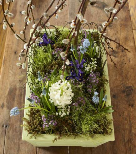 How To Create A Tabletop Garden Midwest Living