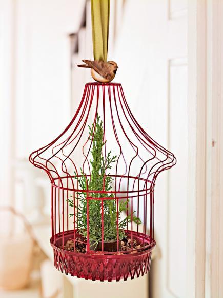 Tree cage