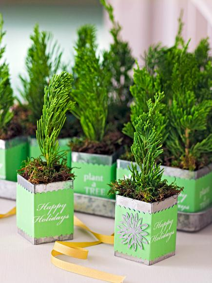 Decorate With Tiny Christmas Trees Midwest Living
