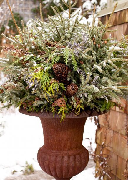 14 cheerful winter container gardens midwest living for Garden arrangement