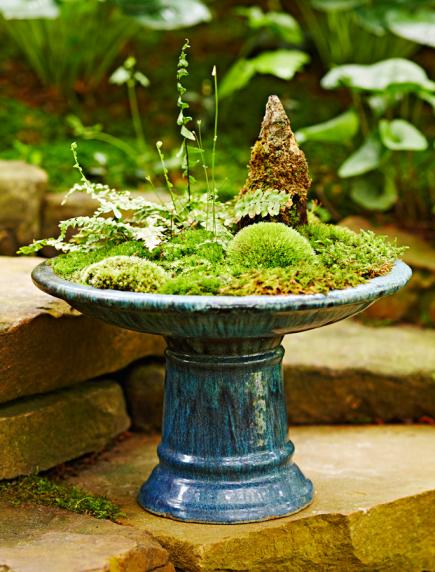 How to make a moss dish garden midwest living - Dish garden containers ...
