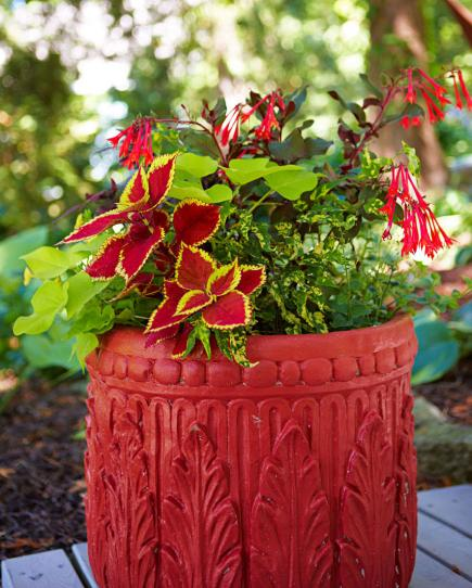 beautiful container gardens  midwest living, Natural flower