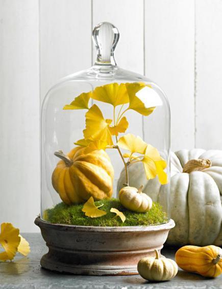 Haciendo un Gourd Birdhouse | ThriftyFun