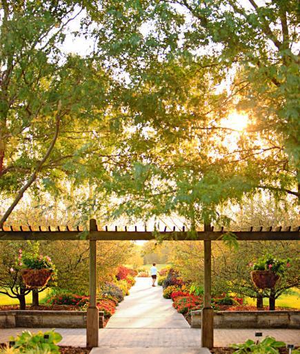 University of Illinois arboretum