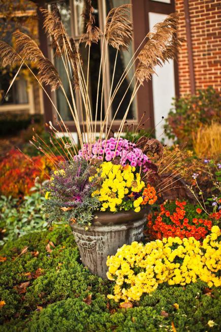 fall flower beds